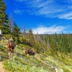 Trail-Riding In High Country Wilderness