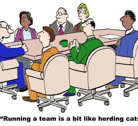 Running a Team is like herding Cats