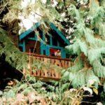 Ken-Leo's Tree House-Front